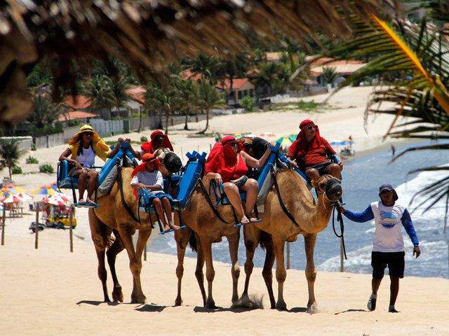 Natal có nhiều cồn cát, bạn có thể sử dụng lạc đà hoặc xe buggy ( xe con bọ) để trải nghiệm những điều thú vị tại đây.