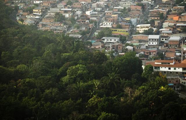 """Manaus là cửa ngõ để đến """"lá phổi xanh"""" của thế giới - rừng Amazon."""