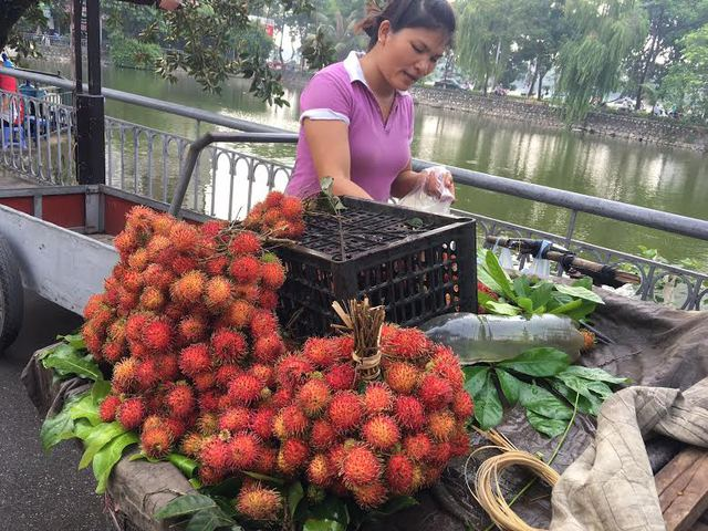 Với giá bán hiện tại, chôm chôm ở Hà Nội đang có giá cao gấp 6-8 lần giá thu mua tại các nhà vườn ở miền Nam