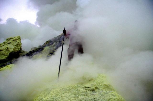 LUCA có thể xuất hiện lần đầu tiên trong các ống thủy nhiệt dưới đáy biển - nơi có nhiệt độ cao như trong lòng núi lửa