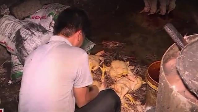 Tất cả các hộ giết mổ gia cầm ở chợ đầu mối Hải Bối (chợ Bắc Thăng Long) đều chưa được cấp giấy chứng nhận đủ điều kiện vệ sinh thú y
