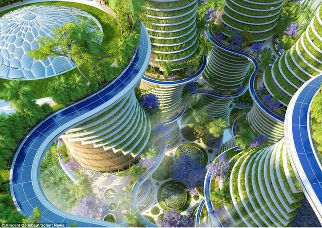 Xen kẽ ở các tầng sẽ là hệ thống gồm hàng nghìn loại cây leo và hoa