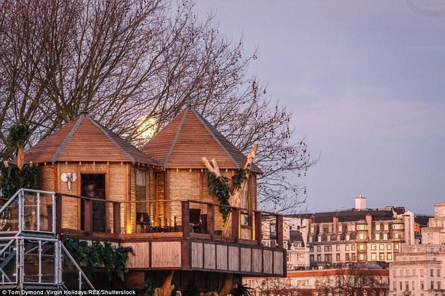 Ngôi nhà trên cây ở London này sẽ bắt đầu nhận đặt phòng từ ngày 29/1.