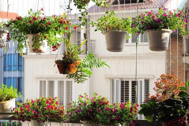 nhung can ho chung cu dep hut hon nho ban cong hoa Cùng nhìn qua những căn hộ chung cư đẹp hút hồn nhờ ban công hoa