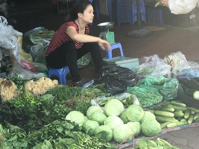 Hà Nội, dân phải ăn bắp cải Trung Quốc được bán với giá 15.000 đồng/kg