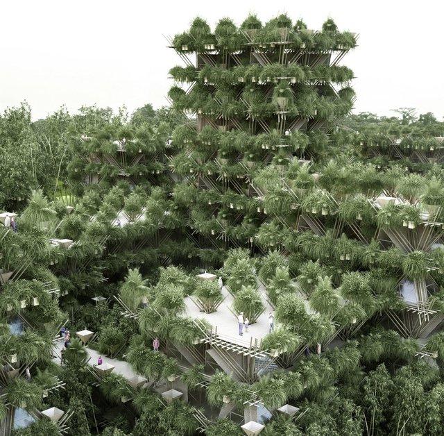 Toàn cảnh ngôi nhà cây được xây dựng chỉ với tre và dây thừng khi được chồng lên nhiều tầng.