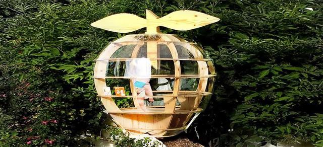 Công trình được thiết kế với hình quả táo – biểu tượng nổi tiếng thế giới của Apple.