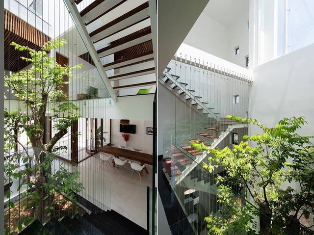 Cầu thang trong ngôi nhà được thiết kế rất đẹp, thanh thoát uốn lượn quanh giếng trời kết hợp với cây xanh manh đến một lối đi vô cùng đẹp mắt.