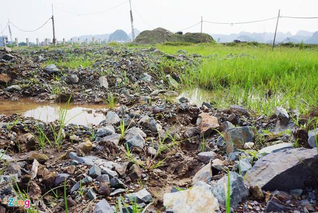 Đất đá quanh dự án đại học Hoa Lư Ninh Bình