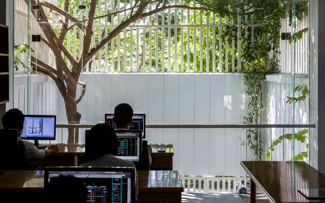 Nhờ thiết kế bằng những then sắt thưa dựng dứng quanh khu vực phía trước vừa giúp cây phát triển tự nhiên vừa giúp nhân đôi không gian văn phòng.