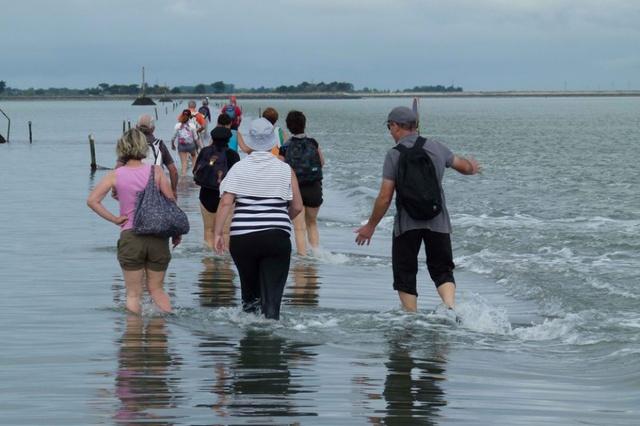 Mặc dù vậy, Passage du Gois vẫn có sức hút riêng. Hàng năm, hàng nghìn du khách thích mạo hiểm tới đây dể khám phá cung đường kỳ lạ này. Họ thường bị mắc kẹt giữa đường do mực nước thủy triều đột ngột dâng cao.
