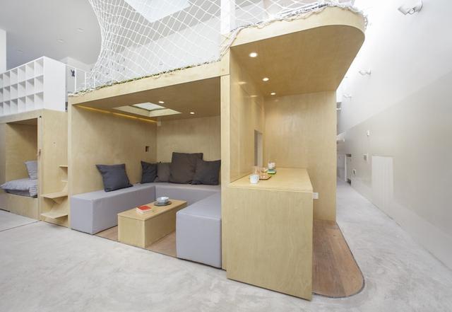 Toàn bộ không gian sống chính của ngôi nhà đều tập trung trong hệ kệ gỗ.