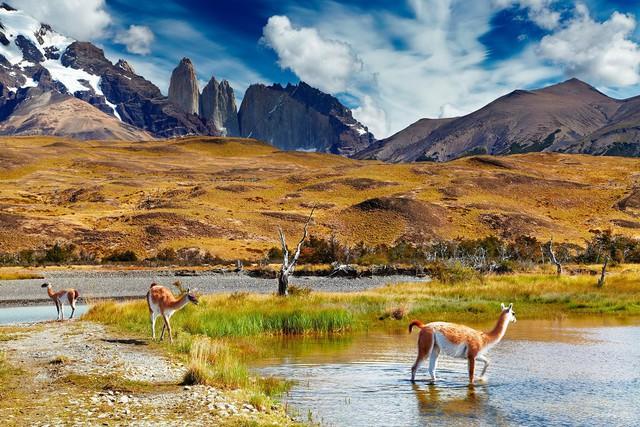 Torres Del Paine, Chi lê ở miền nam Patagonia là một công viên quốc gia nổi tiếng với những ngọn núi đẹp, sông băng và hồ. Đặt chân đến phía nam Patagonia là bạn có thể tản bộ xung quanh các đỉnh núi đá granit đẹp hơn tranh vẽ.
