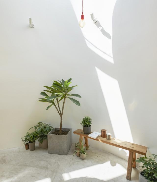 Ngay góc nhà gia chủ còn dành hẳn một không gian nhỏ để trồng cây xanh làm góc thư giãn và đọc sách.