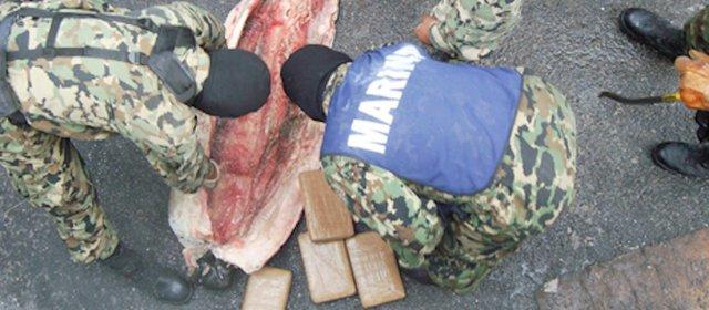 Thịt cá mập đông lạnh được móc ruột để đặt cocaine.