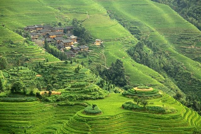 Ruộng bậc thang ở Longsheng, Trung Quốc. Cái tên Longsheng được đặt theo từ Longji- xương sống của rồng. Các thềm đất giống như vảy rồng, trong khi những cánh đồng lúa cứ uốn khúc quanh từng ngọn núi.