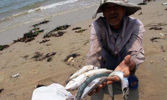 Hình ảnh cá chết ở biển miền Trung do thảm họa môi trường mà Formosa gây ra. Ảnh: Tuổi trẻ