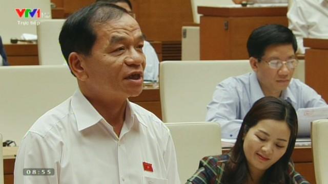 Đại biểu Lê Thanh Vân (Cà Mau)