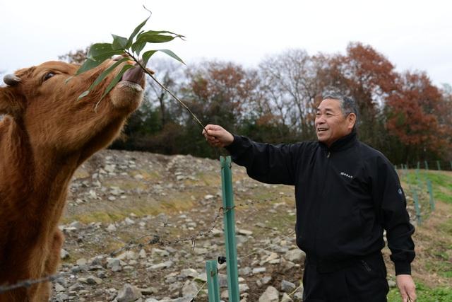 Ông Seikou Sekimura tại trang trại.