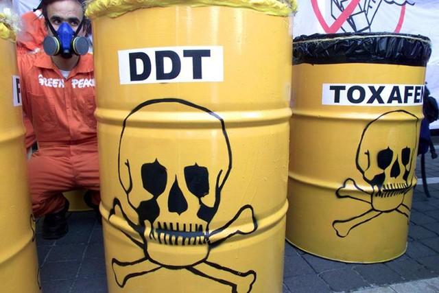 DDT, hợp chất có hai mặt lợi hại, đã giúp nhà khoa học Thụy Sĩ Paul Mueller doạt giải Nobel năm 1948. Ảnh: paris-normandie.