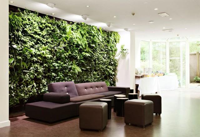 Phòng khách nhà bạn sẽ trở nên đặc biệt hơn nhiều với bức tường độc đáo này. Cây xanh giúp làm tăng sự tĩnh lặng cho ngôi nhà.