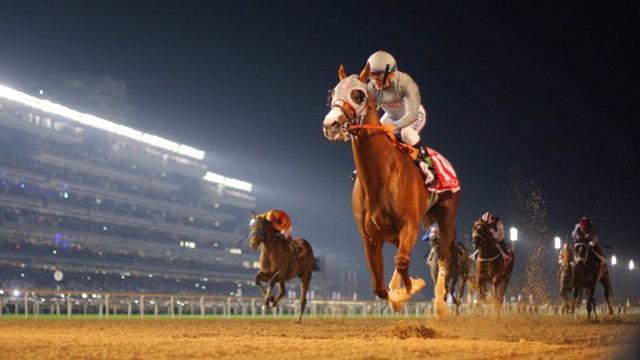 Giải đua ngựa triệu đô: Dubai World Cup, giải đua ngựa có phần thưởng lớn nhất hành tinh - 10 triệu USD, thu hút các tay đua từ khắp nơi trên thế giới. Tổng số tiền giải thưởng của cuộc đua lên tới 30 triệu USD. Ảnh: Scmp.