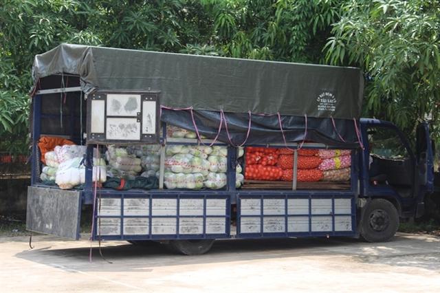 Bắt giữ và tiêu hủy 2,5 tấn bắp cải Trung Quốc không có giấy tờ - Ảnh 1.