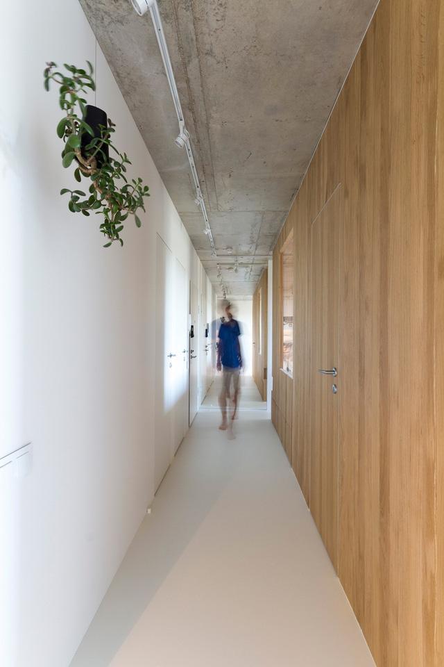 Sự kết hợp giữa trần bê tông thô và hệ kệ gỗ tạo nên cảm giác giản dị mà vô cùng gần gũi cho những ai bước chân vào ngôi nhà này. Trong ảnh là lối vào nhà được trang trí bởi cây xanh.