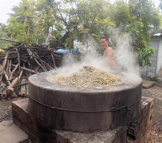 Cau đưa vào luộc 1-2 tiếng trước khi đưa đi sấy khô