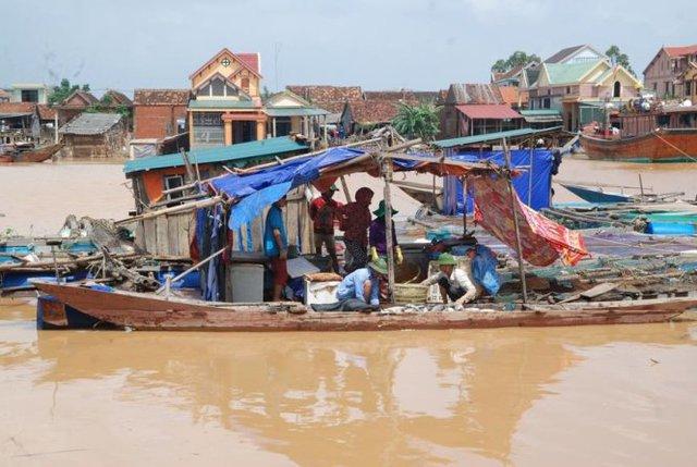 Sau cơn lũ, hàng chục tấn cá chết trên sông Gianh - Ảnh: QUỐC NAM