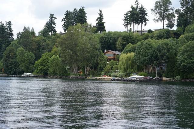 Căn biệt thự được thiết kế thân thiện với môi trường, sống giữa thiên nhiên.