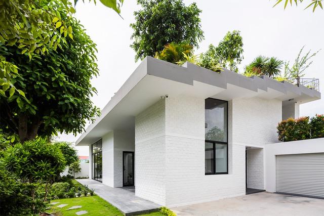 Trên mái nhà có nhiều khu vườn nhỏ giúp lọc không khí, làm mát và giảm đáng kể lượng tiêu thụ điện năng của ngôi nhà.
