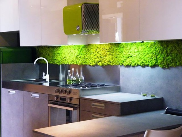 Không gian bếp ăn cũng là nơi lý tưởng để bố trí bức tường cây thẳng đứng như thế này. Nhờ có cây xanh mà không khí trong nhà lúc nào cũng trong lành, mát mẻ.