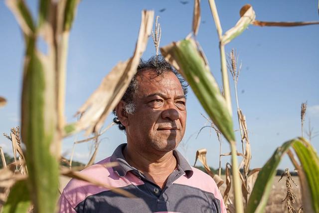 """Người nông dân này nói rằng chẳng có hạt giống hay phân bón và điện thì thường xuyên bị cắt. """"Tôi đang bị lỗ, nhưng đáng buồn là chúng tôi chẳng biết làm gì khác ngoài trồng trọt', Johnny Villaroel, 49 tuổi, nói."""