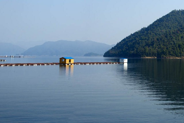 Hồ nước trên núi cao tạo ra môi trường hoàn hảo cho cá tầm.