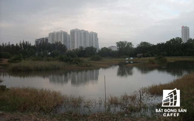 Bốn bề dự án rộng lớn này vẫn hiện là bãi đất hoang hóa, trong khi xung quanh nhiều dự án cao tầng đã mọc lên