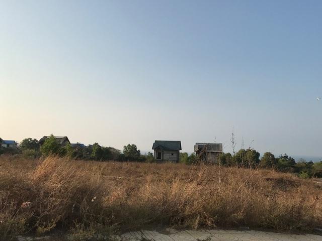 Cỏ dại mọc um tùm bên cạnh những căn biệt thự bỏ hoang.