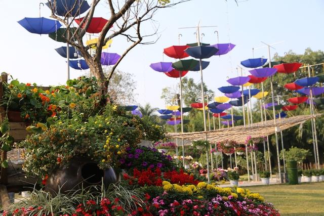 Không gian sắc màu của hoa được kết hợp với những chiếc ô đủ màu sắc.