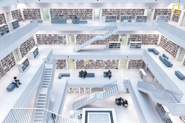 Về thể loại ảnh thành phố, bức ảnh đoạt giải nhất thuộc về Levels of Reading của Norbert Fritz. Bức ảnh chụp toàn cảnh một thư viện hiện đại ở Stuttgart, Đức.