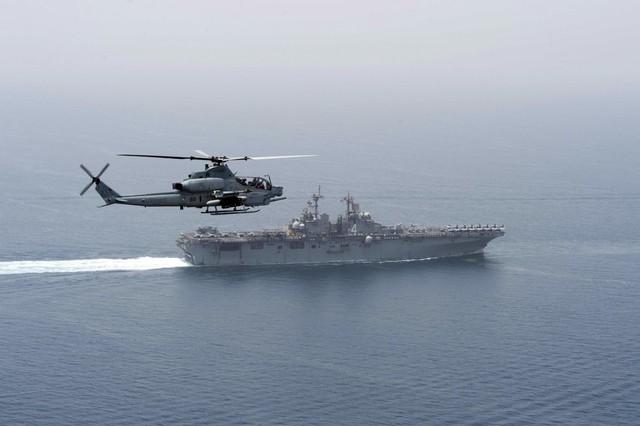 Năm 2012, biệt đội cá heo tiếp tục được triển khai ở Eo biển Hormuz sau khi Iran đe dọa phong tỏa tuyến đường biển huyết mạch này xung quanh những căng thẳng về chương trình hạt nhân gây tranh cãi của nước này.