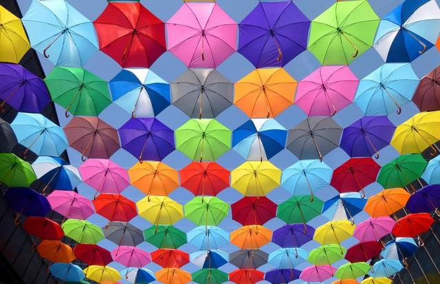 Cuộc sống tẻ nhạt của tôi đã trở nên nhiều màu sắc nhờ chứng khoán