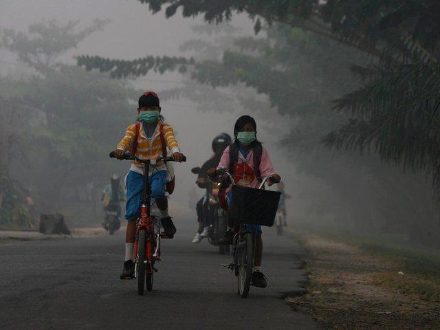Trẻ em đi học trong màn sương mù dày đặc ở tỉnh Trung Kalimantan, indonesia. Không khí khu vực này ô nhiễm tới mức đáng báo động, gây ảnh hưởng nhiêm trọng tới sức khỏe con người, đặc trưng là trẻ em.