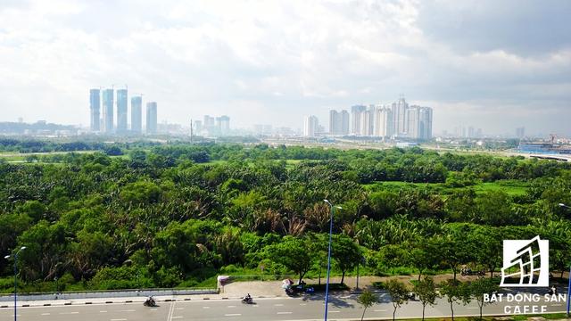 Khu lâm viên - nơi sẽ trở thành lá phổi và trung tâm nghiên cứu hệ sinh thái hiện đại nhất của TP.HCM, do Đại Quang Minh là chủ đầu tư
