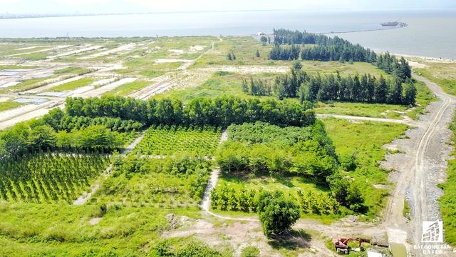 Dự án The Sunrise Bay (Khu đô thị mới quốc tế Đa Phước) nằm ở vị trí đắc địa trên đường Nguyễn Tất Thành ven biển Đà Nẵng (quận Hải Châu, Đà Nẵng). Dự án nằm trong khuôn viên của khu đô thị Đa Phước (được phê duyệt từ năm 2007) và có một phần diện tích lấn biển có diện tích 181 ha, nằm ở phía bắc Thành phố Đà Nẵng có mục tiêu lấn biển để xây dựng hơn 8.500 căn hộ, trung tâm thương mại, văn phòng, khách sạn, sân golf 18 lỗ.
