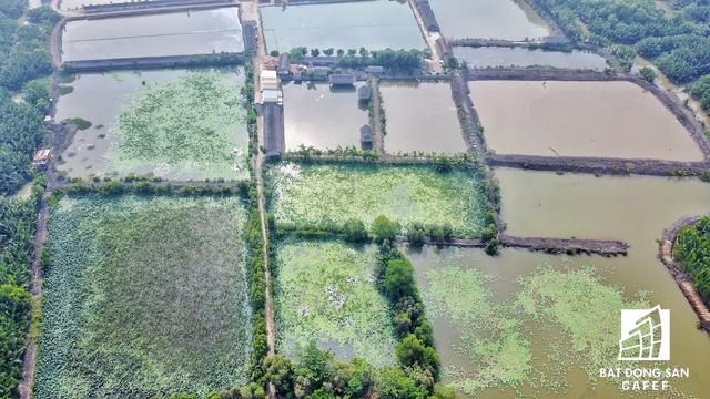 Nhiều ao hồ nuôi tôm, cá của các hộ dân bên trong khu đất đã được quy hoạch hơn 20 năm