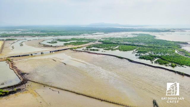 Phó Thủ tướng yêu cầu tỉnh Bà Rịa-Vũng Tàu báo cáo quá trình giải quyết việc giao và chấm dứt hoạt động dự án lên Thủ tướng trước ngày 30/12/2017.