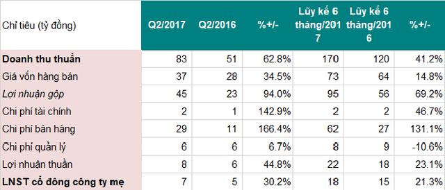 Tóm tắt kết quả kinh doanh 6 tháng đầu năm (nguồn BCTC DP3)