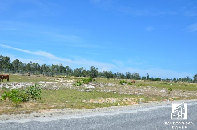 Gần 1.000ha đất dự án vẫn còn hoang hóa, nhiều biển hiệu công bố thông tin đã phai mờ theo thời gian