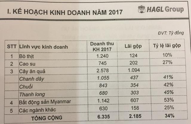 ĐHCĐ HAGL: Ước tính lãi nghìn tỷ từ cây ăn quả và hơn 600 tỷ từ BĐS Myanmar - Ảnh 2.