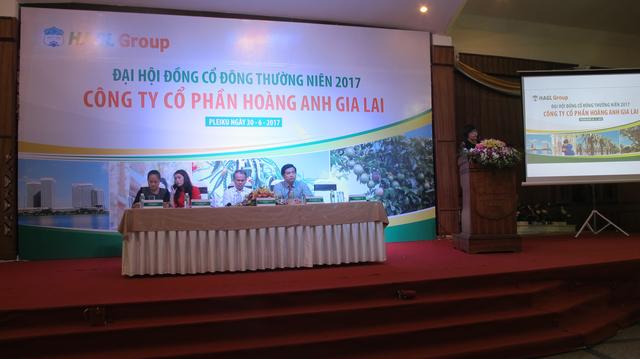 ĐHCĐ HAGL: Ước tính lãi nghìn tỷ từ cây ăn quả và hơn 600 tỷ từ BĐS Myanmar - Ảnh 1.